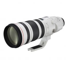 Canon EF 200-400mm f/4L IS USM with Ext 1.4x Lens
