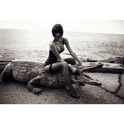 Faux Croc