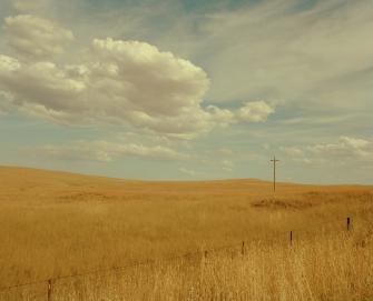 Ngarigo Country 2