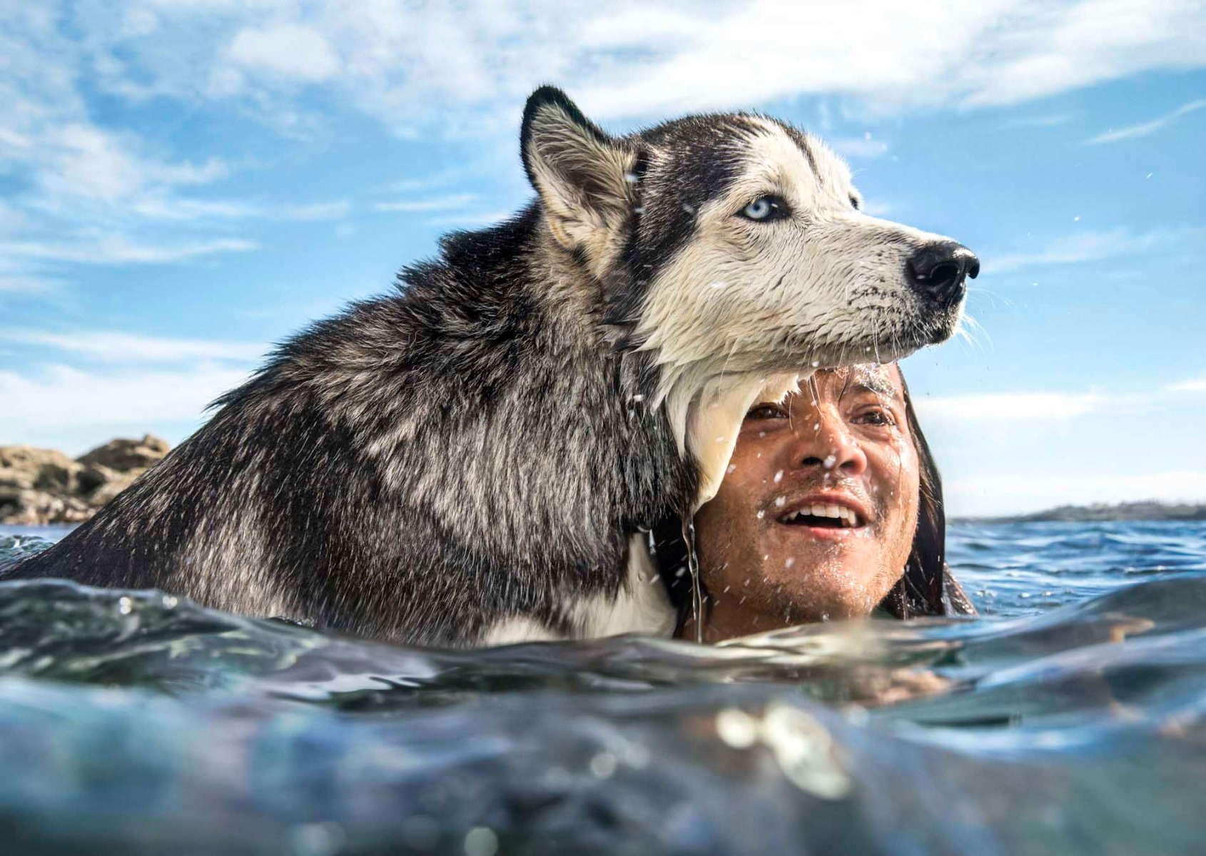 man-in-the-surf-with-his-husky-dog