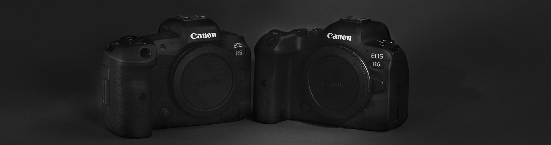 black-and-white-image-of-canon-eos-r5-and-r6-camera-bodies