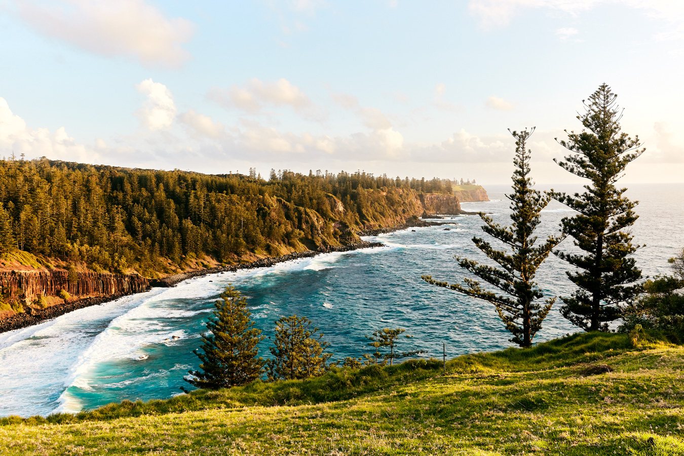 Norfolk Island by Bonnie Coumbe, commissioned by Delicious magazine for their February 2019 issue.