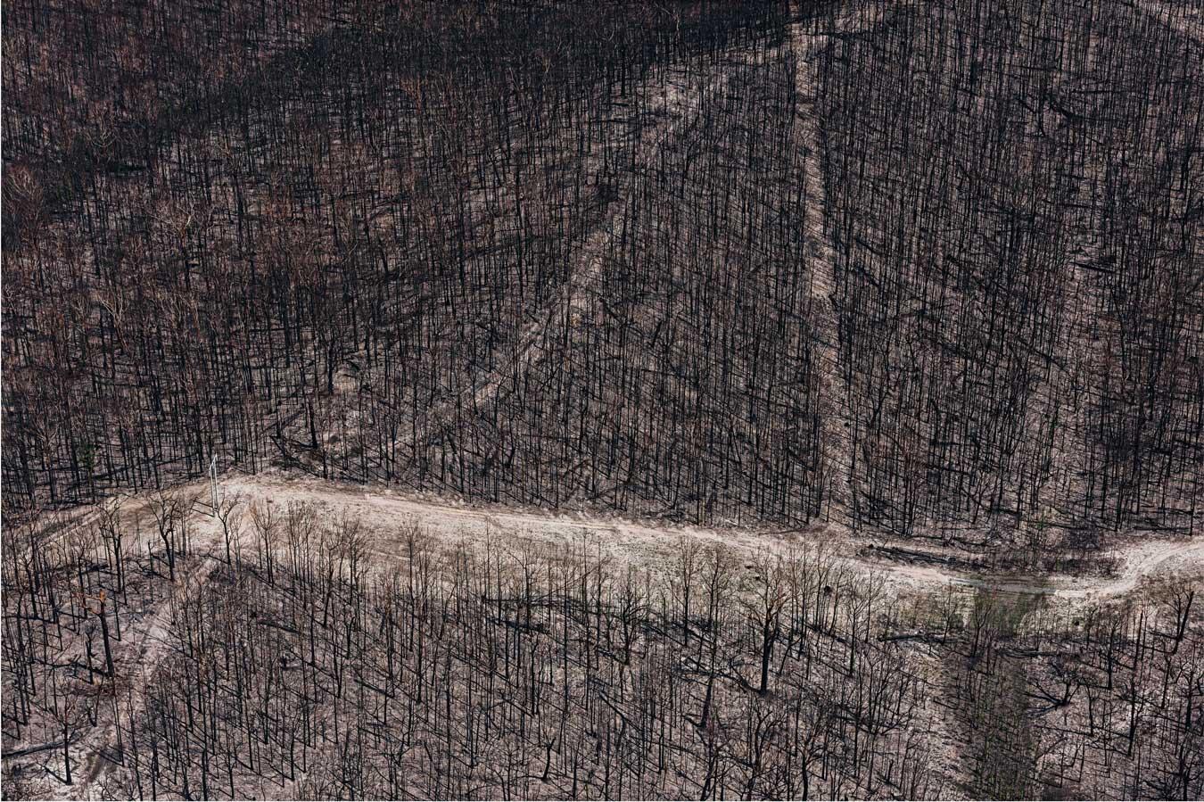 arial-shot-of-burnt-bushland-near-lake-conjola-by-james-brickwood.